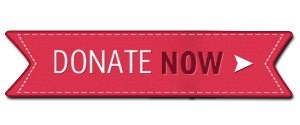 christmas donate button 300x125